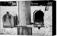 Unused Canvas Prints - empty old used american private mailboxes one with birdsnest in Lynchburg tennessee usa Canvas Print by Joe Fox