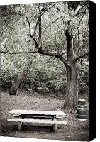Garbage Canvas Prints - Empty Picnic Area Canvas Print by Sam Bloomberg-rissman
