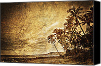 Skip Nall Canvas Prints - Empty Tropical Beach 3 Canvas Print by Skip Nall