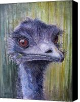 Ostrich Pastels Canvas Prints - Emu Alert Canvas Print by Shirley Leswick