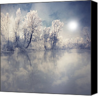 Forest Canvas Prints - Endless Canvas Print by Philippe Sainte-Laudy Photography