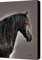 Foal Painting Canvas Prints - Equus Canvas Print by Corey Ford