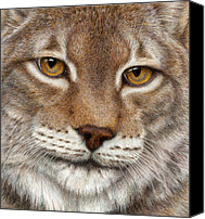 Colored Pencil Canvas Prints - Eurasian Lynx Canvas Print by Pat Erickson
