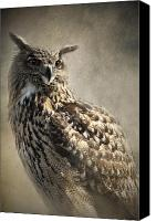 Eagle Watching Canvas Prints - European Eagle Owl Canvas Print by Ethiriel  Photography