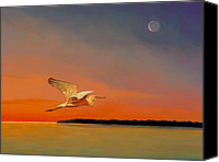 Shore Mixed Media Canvas Prints - Evening Flight Canvas Print by David  Van Hulst
