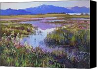 Markleeville Canvas Prints - Evening in the Marsh Canvas Print by Bonita Paulis