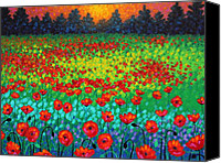 Turquoise Canvas Prints - Evening Poppies Canvas Print by John  Nolan