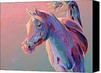 Abstract Equine Canvas Prints - Evening Run Canvas Print by Bob Coonts