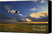 Plane Canvas Prints - Evening Spitfire Canvas Print by Meirion Matthias
