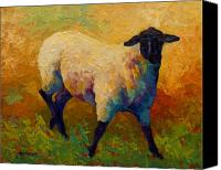 Farms Canvas Prints - Ewe Portrait IV Canvas Print by Marion Rose