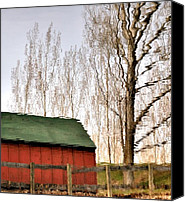 Fences Canvas Prints - Expressionism Reflected Canvas Print by Steven Milner