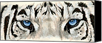 Wildcats Canvas Prints - Eye-Catching Royal White Bengal Canvas Print by Barbara Keith