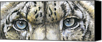 Wildcats Canvas Prints - Eye-Catching Snow Leopard Canvas Print by Barbara Keith