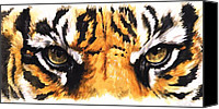 Wildcats Canvas Prints - Eye-Catching Sumatran Tiger Canvas Print by Barbara Keith