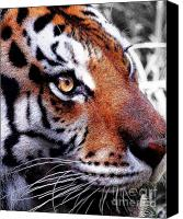 Animals Art Digital Art Canvas Prints - Eye of the Tiger Canvas Print by Animals Art