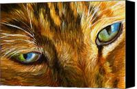 Tabby  Painting Canvas Prints - Eyes of the cat Canvas Print by Mary Jo  Zorad