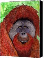 Orangutan Painting Canvas Prints - Eyes of the Orangutan Canvas Print by Doug Hiser