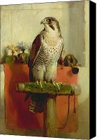 Feathers Painting Canvas Prints - Falcon Canvas Print by Sir Edwin Landseer