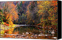 Rushing Mountain Stream Canvas Prints - Fall Color Elk River Canvas Print by Thomas R Fletcher