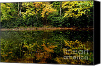 Williams Canvas Prints - Fall Color River Canvas Print by Thomas R Fletcher