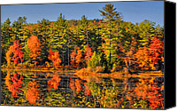 Fall Scenes Canvas Prints - Fall For It Canvas Print by Emily Stauring