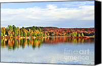 Tranquil Canvas Prints - Fall forest reflections Canvas Print by Elena Elisseeva