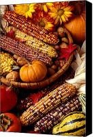 Nuts Canvas Prints - Fall harvest Canvas Print by Garry Gay