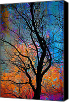 Winter Promise Canvas Prints - Fall Magic Canvas Print by David Clanton