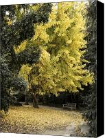 Colorfull Canvas Prints - Fall Now Canvas Print by Viktor Savchenko