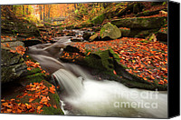 Bulgaria Canvas Prints - Fall Power Canvas Print by Evgeni Dinev
