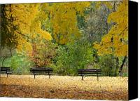 Park Benches Canvas Prints - Fall Series 12 Canvas Print by Anita Burgermeister