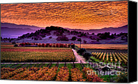 Napa Valley Canvas Prints - Fall Sunset Canvas Print by Mars Lasar