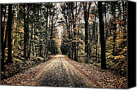 Dirt Roads Photo Canvas Prints - Fallen Road Canvas Print by Nathan Larson