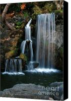 Bruster Canvas Prints - Falling For You Canvas Print by Clayton Bruster