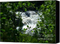 Sue Jenkins Canvas Prints - Falls In Forest Frame Canvas Print by Sue Jenkins