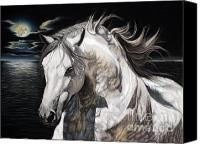 Moonlight Pastels Canvas Prints - Fandango - PRE Stallion Canvas Print by Sabine Lackner