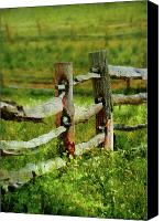 Backdrop Canvas Prints - Farm - Fence - The old fence post  Canvas Print by Mike Savad