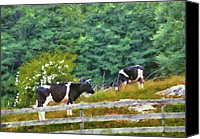 Got Canvas Prints - Farm - Cow - Moo  Canvas Print by Mike Savad