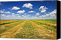 Saskatchewan Canvas Prints - Farm field at harvest in Saskatchewan Canvas Print by Elena Elisseeva