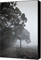 Dirt Road Canvas Prints - Farm Road Canvas Print by 2BDesign