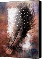 Still Life Pyrography Canvas Prints - Feather Canvas Print by Mauro Celotti
