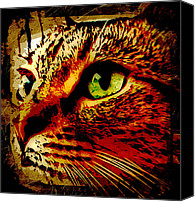 Animals Canvas Prints - Feline Thoughts Canvas Print by David G Paul