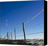 Barbed Wire Fences Canvas Prints - Fence covered in hoarfrost in winter Canvas Print by Bernard Jaubert