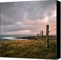 Barbed Wire Fence Canvas Prints - Fence In Ireland Canvas Print by Danielle D. Hughson
