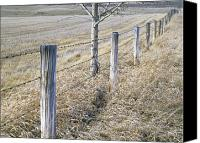 Barbed Wire Fences Photo Canvas Prints - Fenceline And Cropland In Late Fall Canvas Print by Darwin Wiggett
