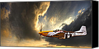 Raf Canvas Prints - Ferocious Frankie Canvas Print by Meirion Matthias