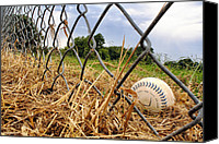 Baseball Parks Canvas Prints - Field of Dreams Canvas Print by Jason Politte