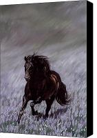 Equine Pastels Canvas Prints - Field of Dreams Canvas Print by Kim McElroy