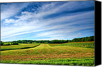 Rural Scenes Photo Canvas Prints - Field of Dreams Two Canvas Print by Steven Ainsworth