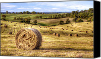 Hay Canvas Prints - Fields of Gold Canvas Print by Scott Norris